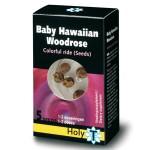 hawaiian-baby-woodrose